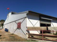 Balıkesir Erdek Paşalimanı'nda Satılık 14500 M2 Kurulu Çiftlik